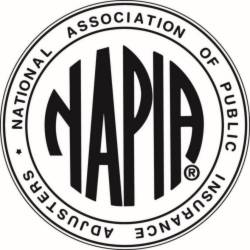 NAPIA Logo Small